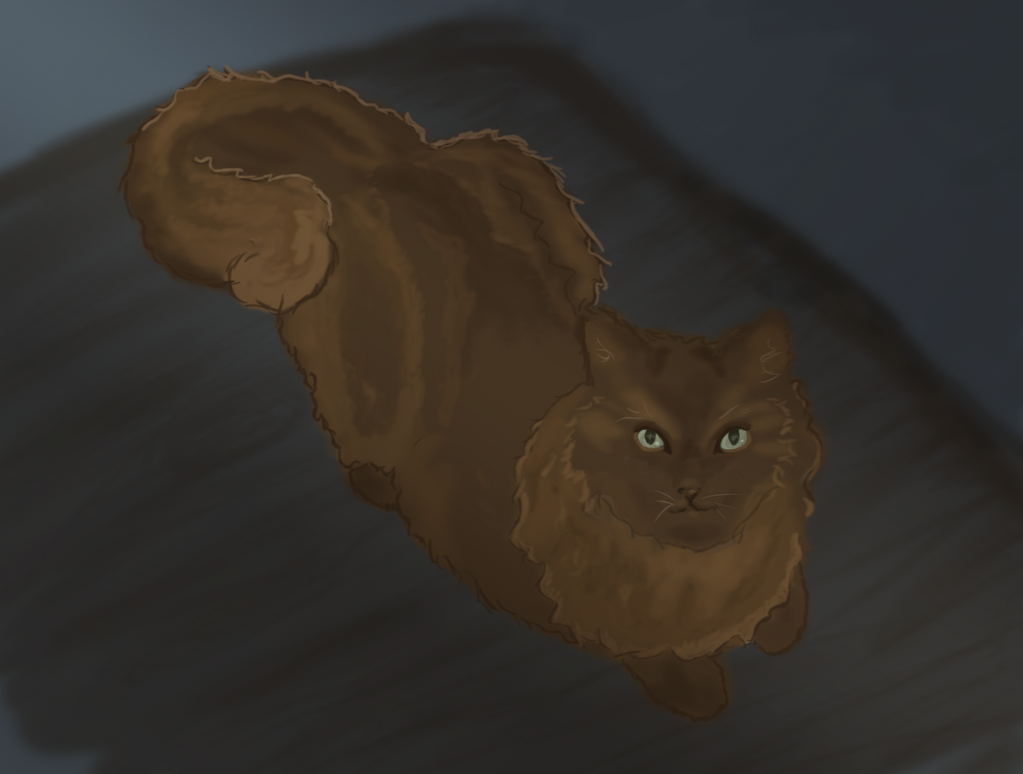Cat Practice- 2 by Sashova