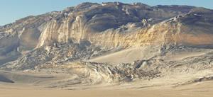 Twisted Desert