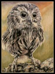 Owlie by garfildus