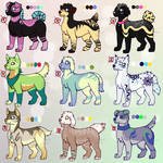 Canine adoptables CLOSED