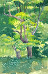 Trees by CultivatingHonesty