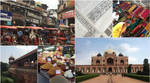Aster Is in India 3 by wave-lens