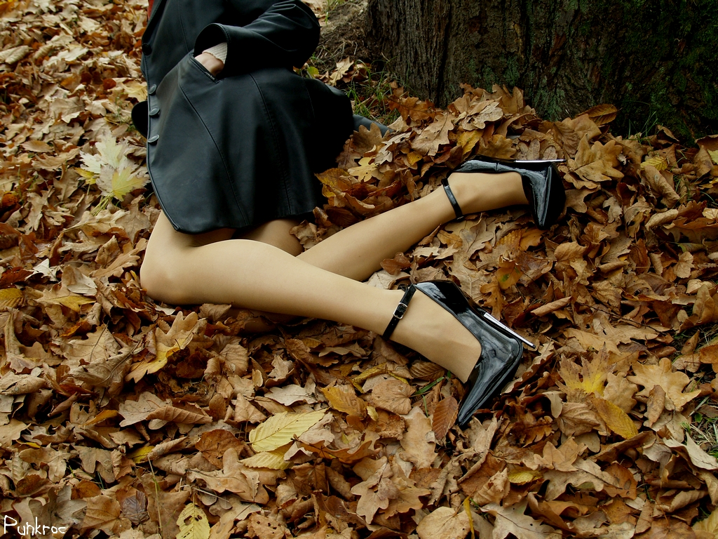 http://fc08.deviantart.net/fs35/f/2008/299/b/9/Springlike_heels_in_autumn_by_punkroc.jpg