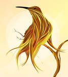 colibrie