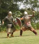 Boyar vs western man at arms.