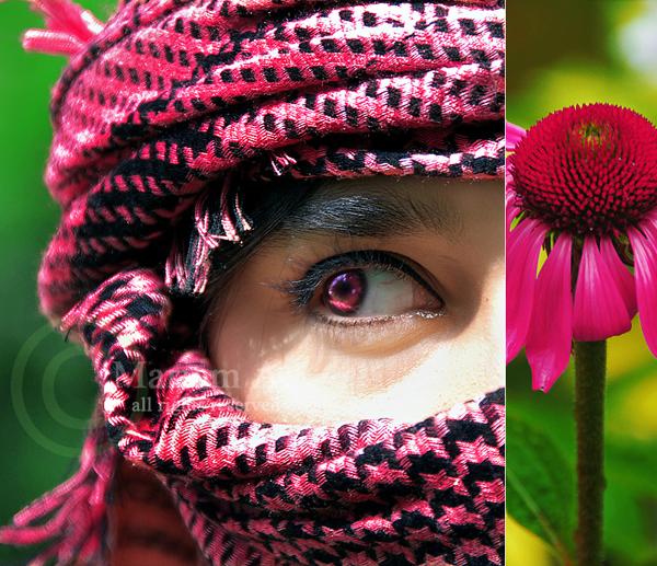 http://fc82.deviantart.com/fs35/f/2008/312/9/a/9a1007fcf328bae58071d35683ea2ad0.jpg
