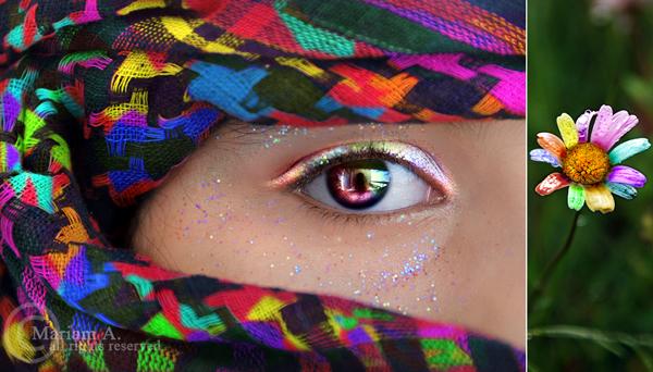 Rainbow by MeemzZz