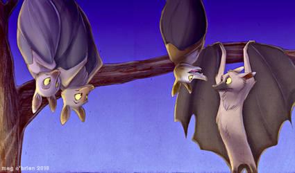 Fruit bats. by combustication