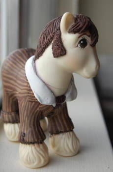 The Tenth Doctor Pony 1