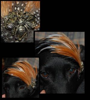 Feather Bee Steampunk Headband