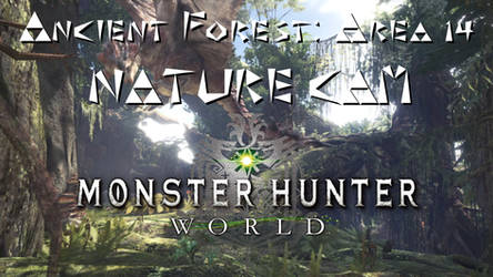 Ancient Forest Area 14 Nature Cam Video by xglide