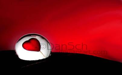 True Love by dansch