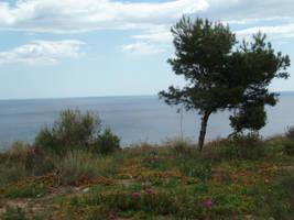 View at the sea by Mattlis