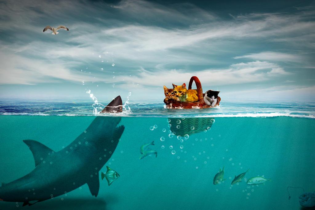 Such a big fish by Mattlis