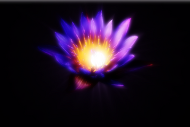 Purple Lotus Flower by Litejk