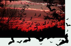 bats.. by Ange-L-ove