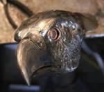 eagle head progress by artistladysmith