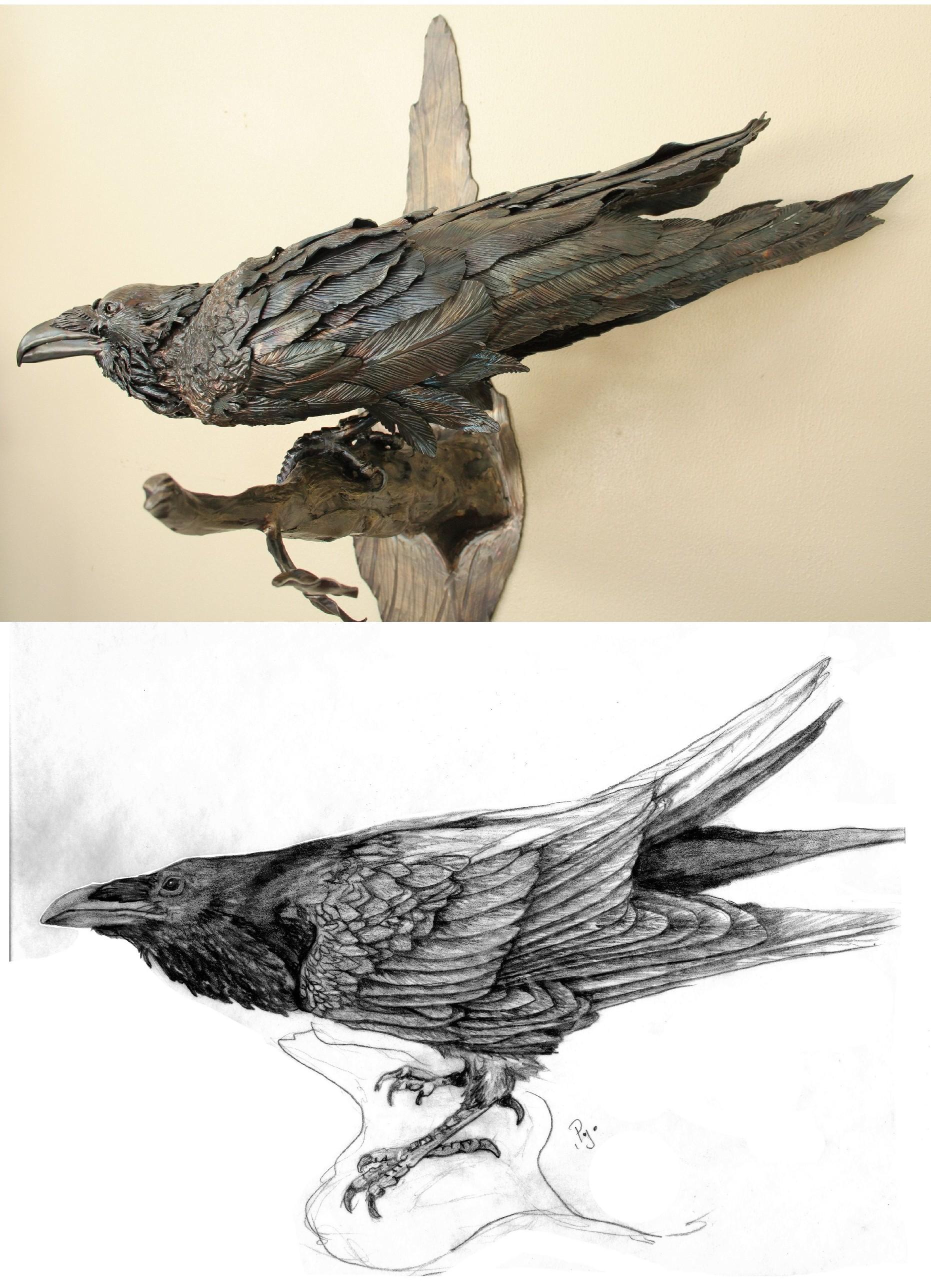 Ravenwsketch by artistladysmith