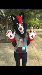 First fursuit - Ray-Ray the wolf