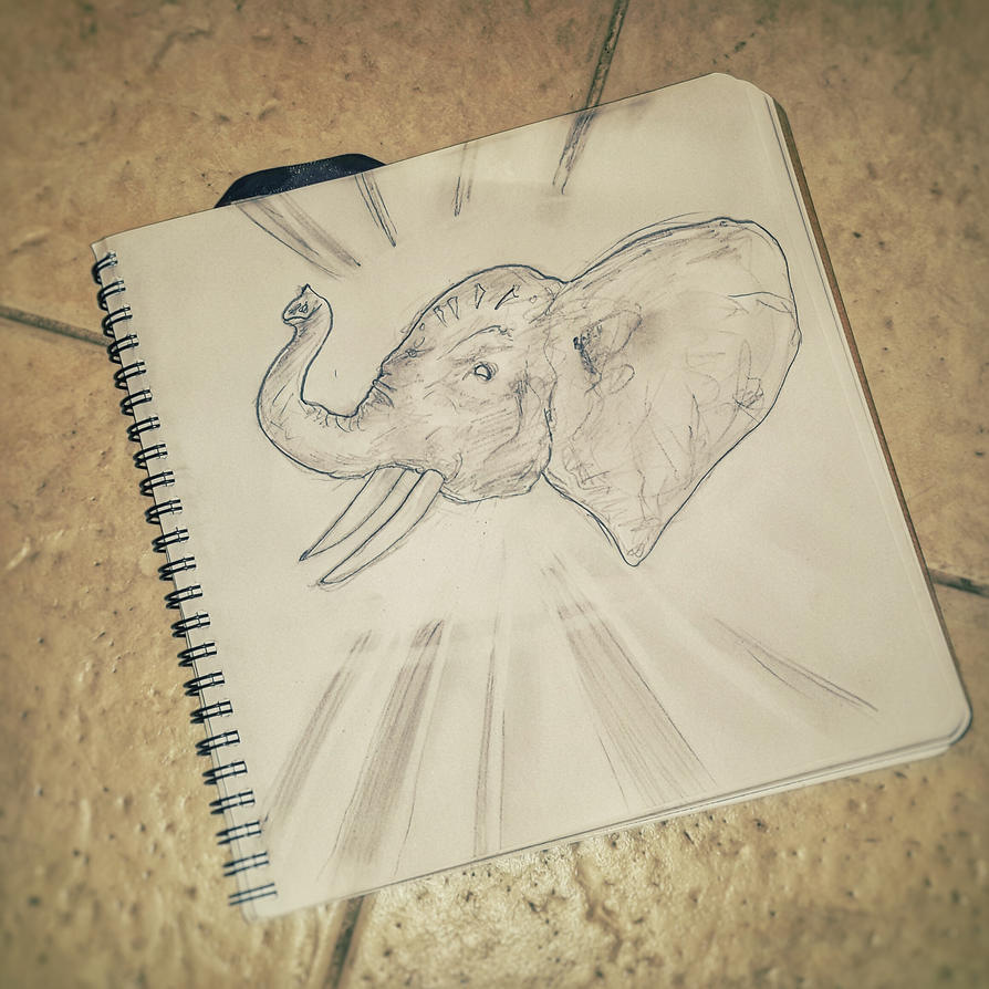 How to not sketch an elephant by doomiest