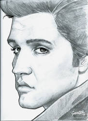 Elvis by Grainicus