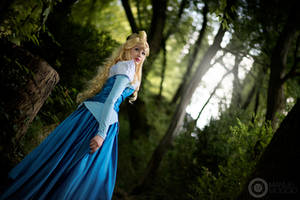 Follow a voice. Sleeping Beauty by Giuzzys