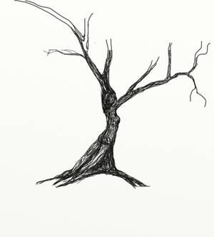 dryad sketch