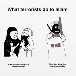 What terrorists do to Islam by katiejo911
