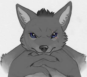 Dukecz wolf by Rikkoshaye