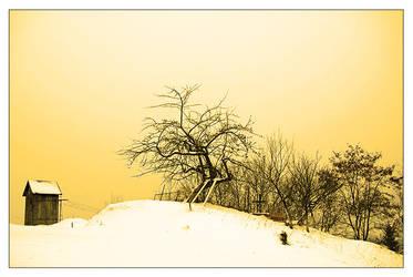 Winter Wondeland II by vendoritza