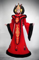 Amidala Throne Room Invasion costume by RebelAllianceBarbie