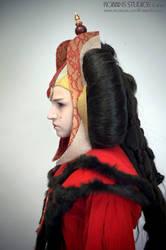 Amidala Throne Room Invasion costume profile