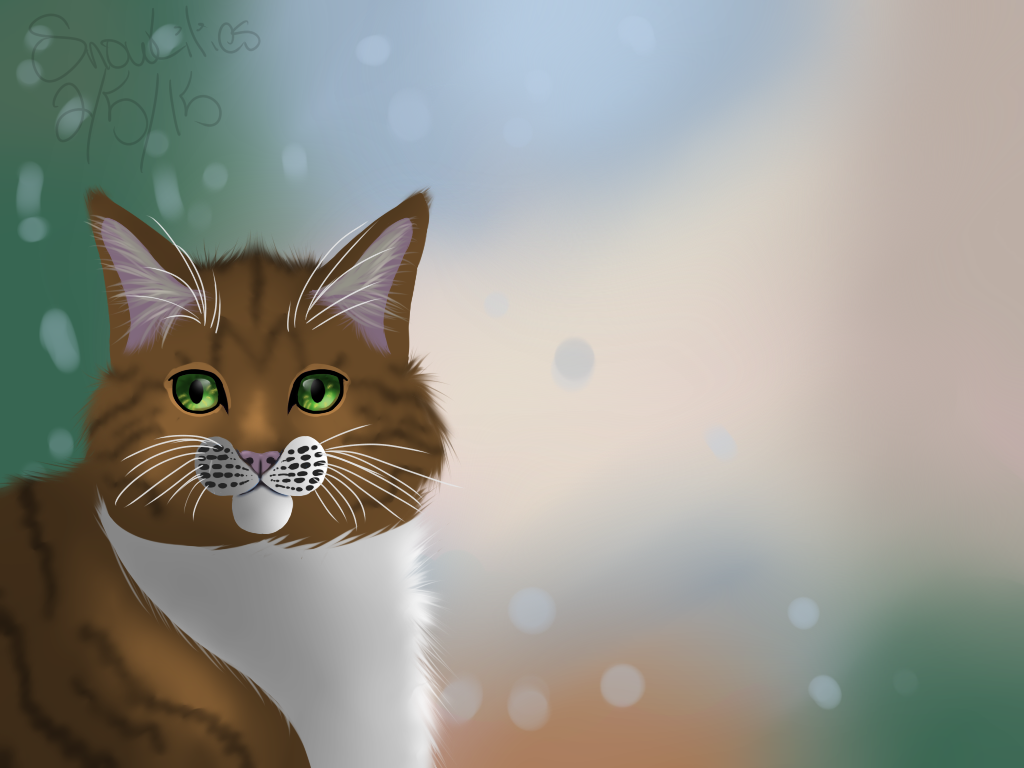 Realistic cat practice by SnowLilies