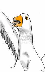 Bird goose by popmaster6922