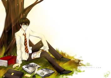 Harry Potter by IvyLiau