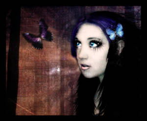 Butterfly Fantasies