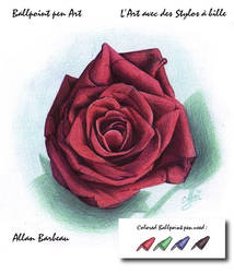 Ballpoint pen Art - rose