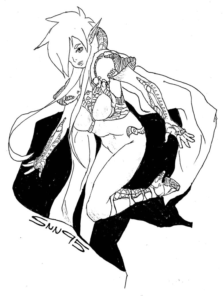 Assassin Commandant by SNN95