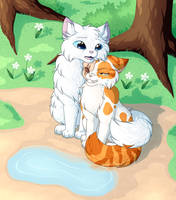 Warrior Cats - You're still Beautiful to me