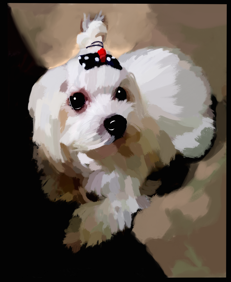 Maltese Dog Portrait by GiraffeMeow