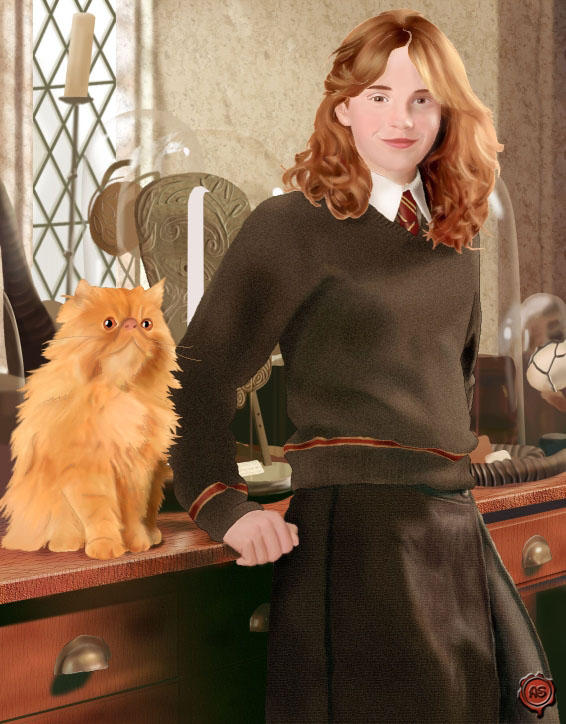 Hermione And Crookshanks by Daelynsdoodles on DeviantArt