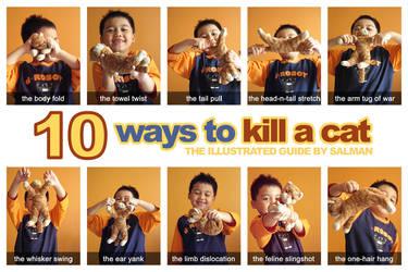 10 Ways to Kill a Cat by aneesah