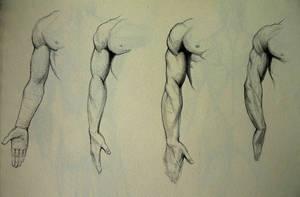 Anatomy Study by Kimsuyeong81
