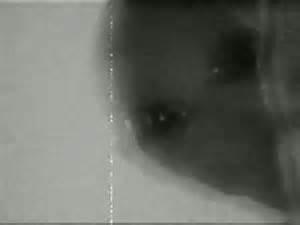 DarknessAnubis's Profile Picture