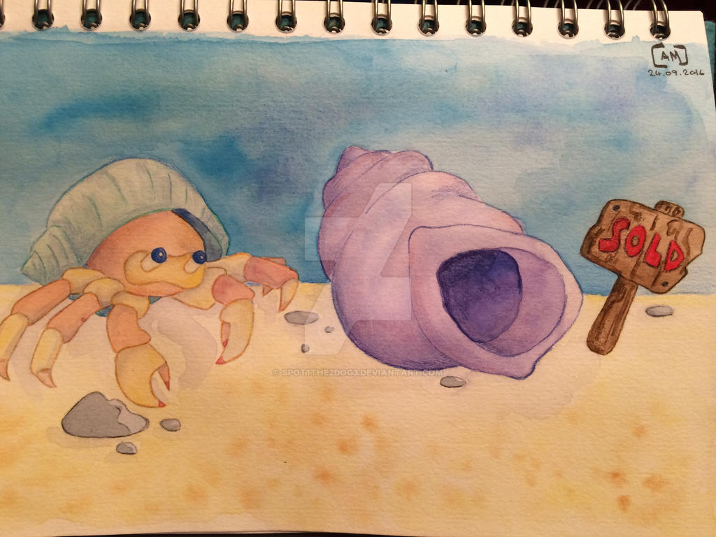 Hermit crab by spot1the2dog3