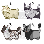 [ST] Cheap Chubby Cat Adopts 1/4 OPEN