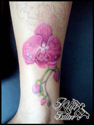 Orchid Tattoo WIP by EdilsonR74