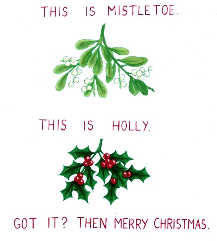 HOLLY IS NOT MISTLETOE