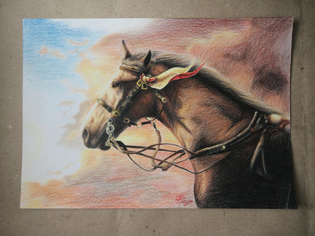 War horse joey drawing