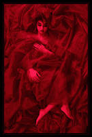 The Red Sleep by lorrainemd